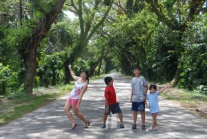 Trees in San Luis Baler